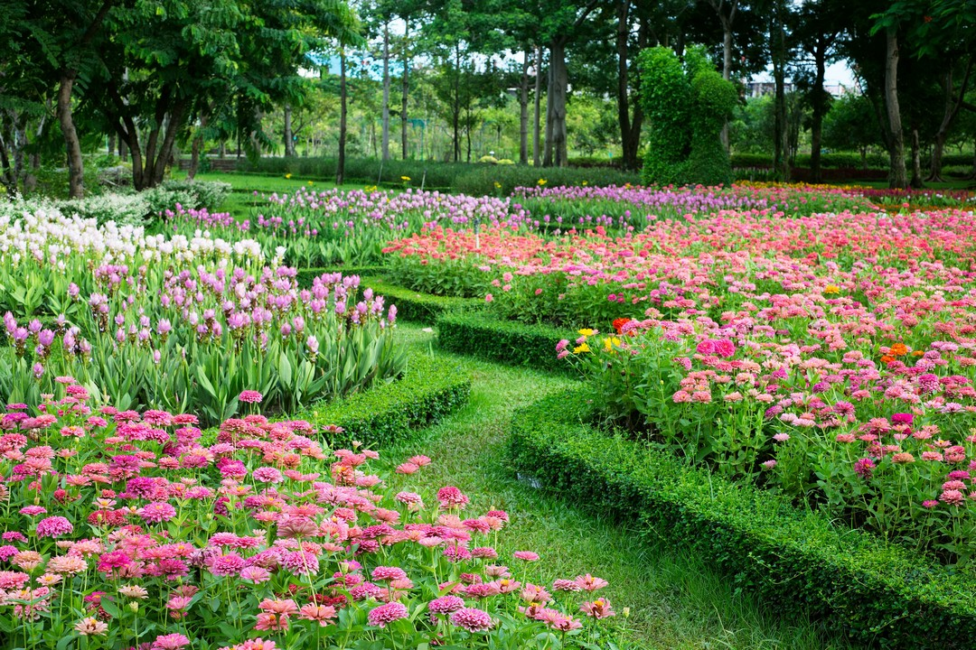 Comment cr er un jardin paysager l anglaise for Jardin 02