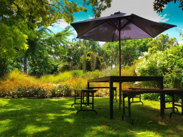Aménagement jardin : de la fraîcheur au jardin pour l'été !