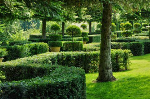 Am Nager Un Jardin En Pente