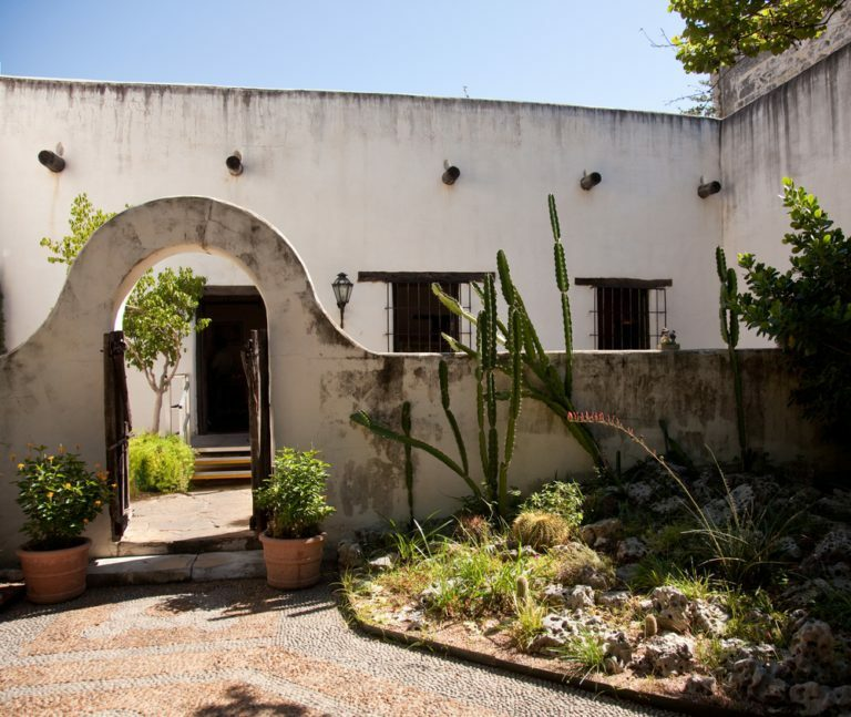 Aménager un jardin mexicain