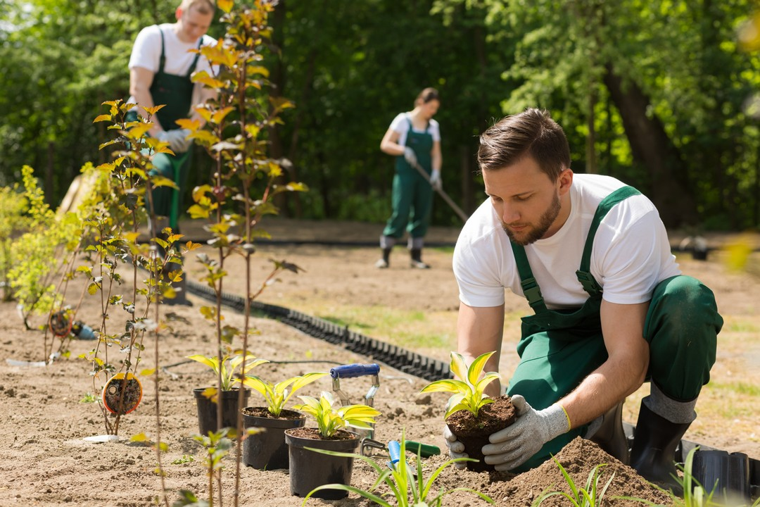 faire appel   jardinier paysagisteinfo