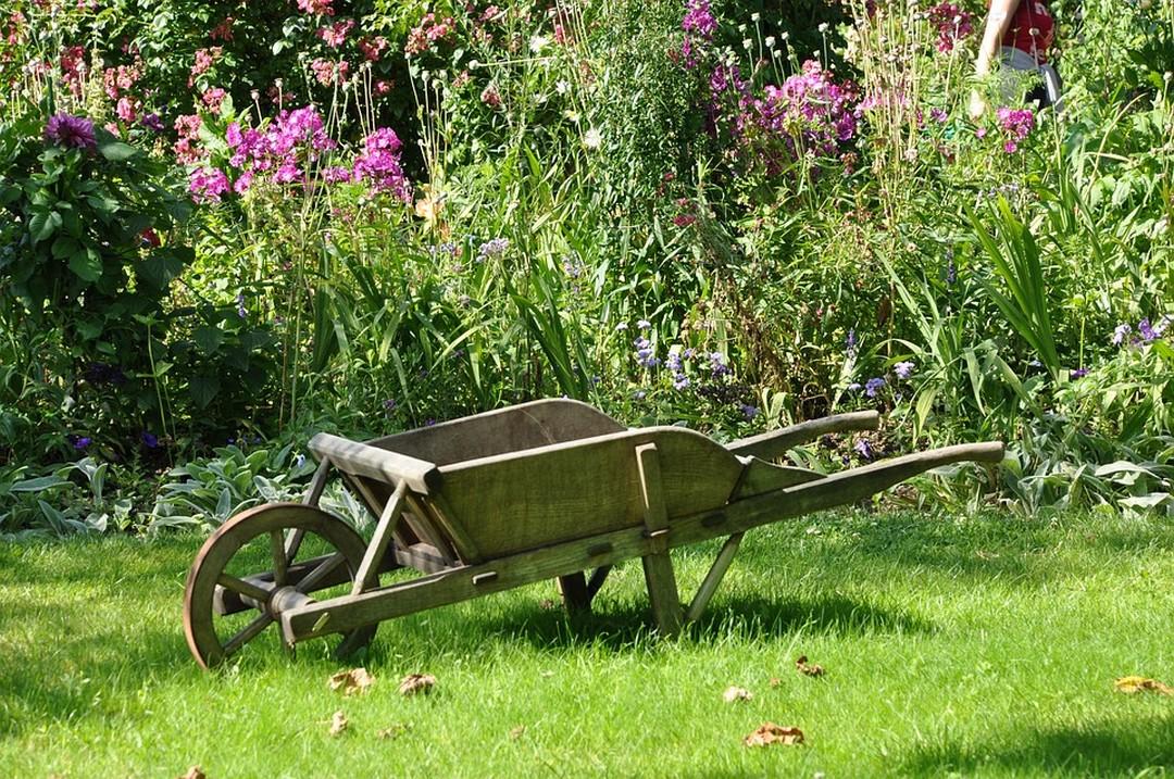 5 éléments indispensables d'un jardin réussi