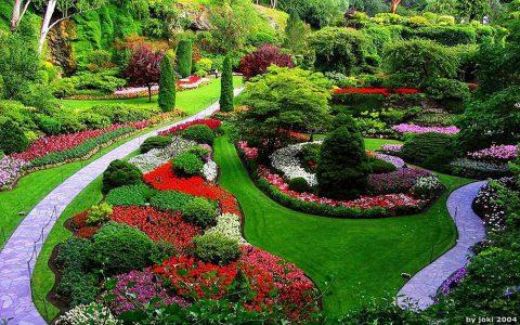 Tout savoir sur l'agrément de son jardin