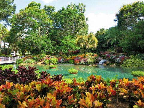 Tous nos conseils pour aménager votre jardin