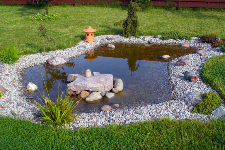 Personnaliser votre jardin (bassin, plantes, éclairage, jeux d'enfants, etc.)