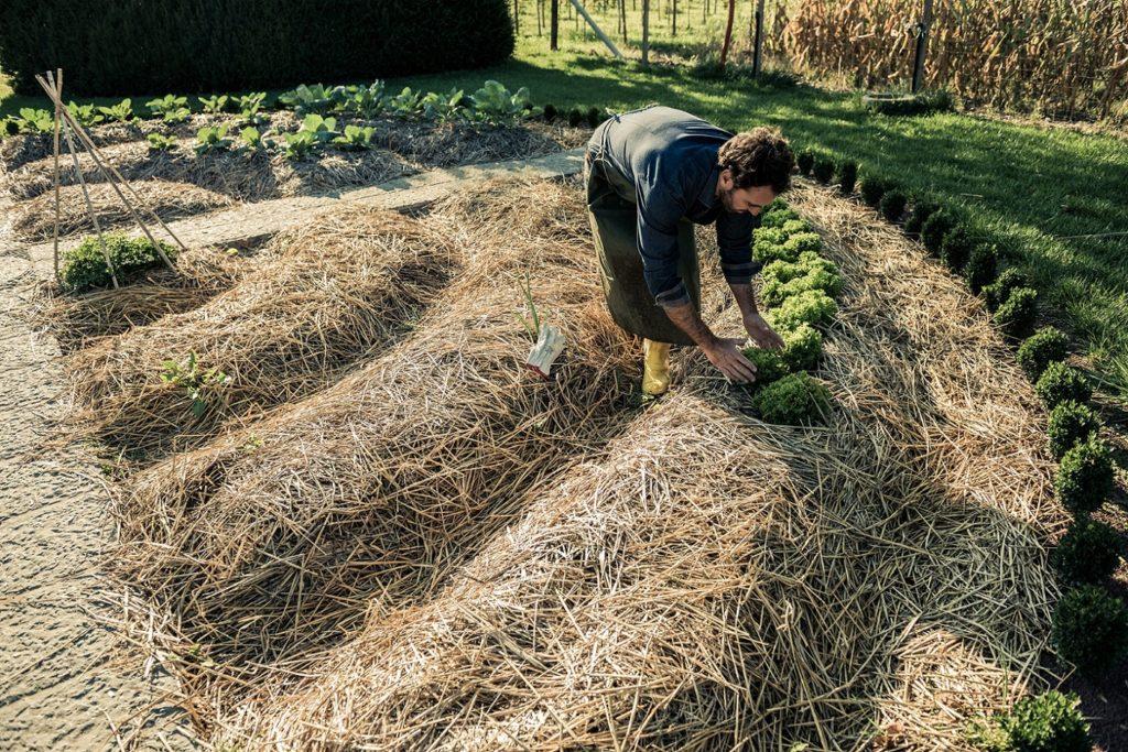 préparation des sols permaculture