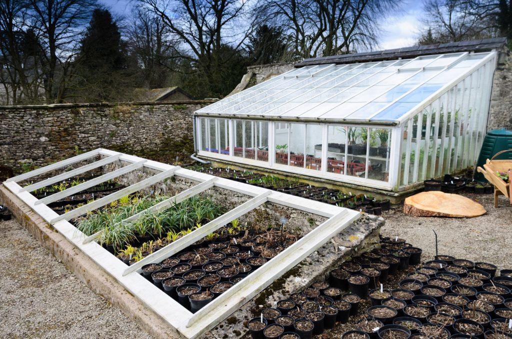 serres de jardin pour cultures