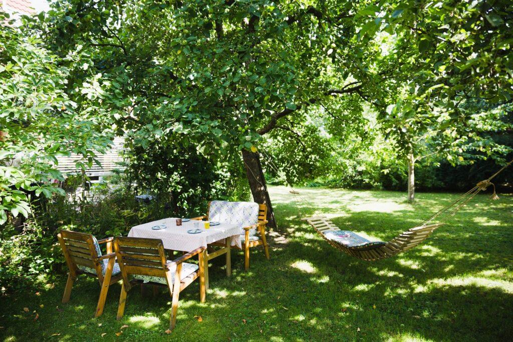 mobilier de jardin à l'ombre des arbres